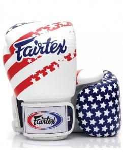 fairtex usa tribute muay thai gloves