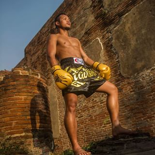 fairtex falcon gloves 3