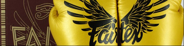 fairtex falcon gloves 7