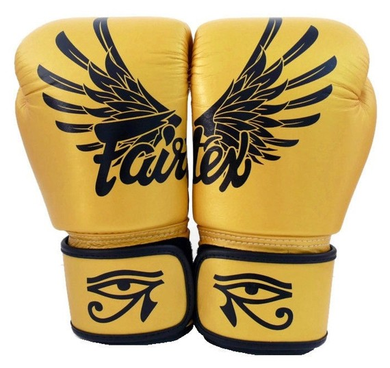 fairtex falcon gloves 8
