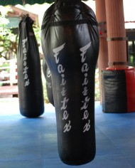 fairtex hb 12 bag 1