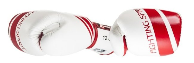 twins special fighting spirit gloves red and white