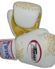twins special gloves dragon 4
