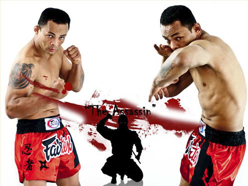 fairtex assassin shorts
